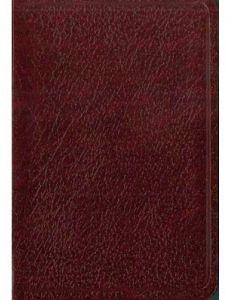 SANTA BIBLIA DE BOLSILLO             (NVI)