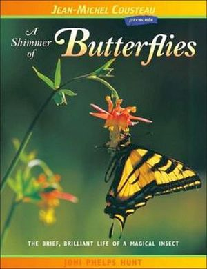 SHIMMER OF BUTTERFLIES