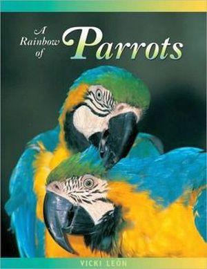 RAINBOW OF PARROTS