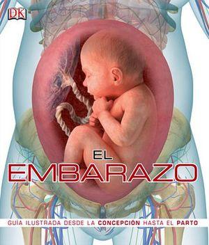 EMBARAZO, EL -GUIA ILUSTRADA DESDE LA CONCEPCION HASTA EL PARTO-