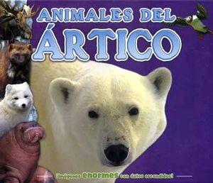 DATOS ESCONDIDOS -ANIMALES DEL ARTICO-