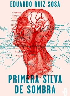 PRIMERA SILVA DE SOMBRA