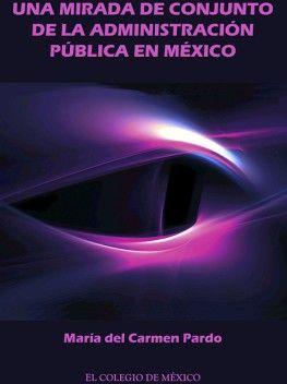 UNA MIRADA DE CONJUNTO DE LA ADMINISTRACION PUBLICA EN MEXICO