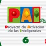 PROYECTO DE ACTIVACION DE LA INT. PLUS 6TO. PRIMARIA