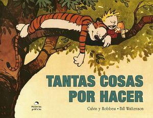 TANTAS COSAS POR HACER (8)                (HISTORIAS GRAFICAS)