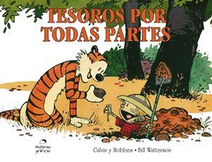 CALVIN Y HOBBES 10 -TESOROS POR TODAS PARTES- (HISTORIAS GRAFICA)