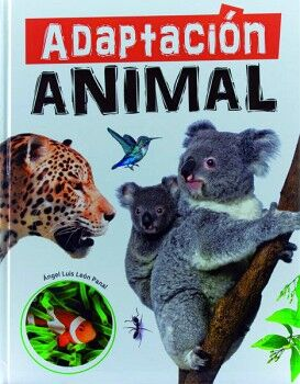 MEGAFAUNA: ADAPTACIÓN ANIMALES
