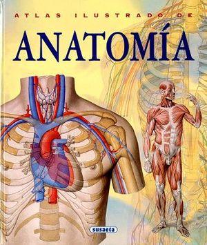 ATLAS ILUSTRADO DE ANATOMIA