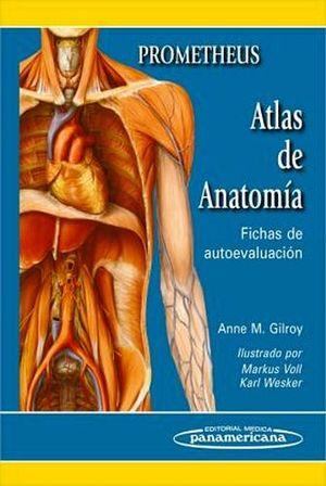 ATLAS DE ANATOMIA -FICHAS DE AUTOEVALUACION- (PROMETHEUS)