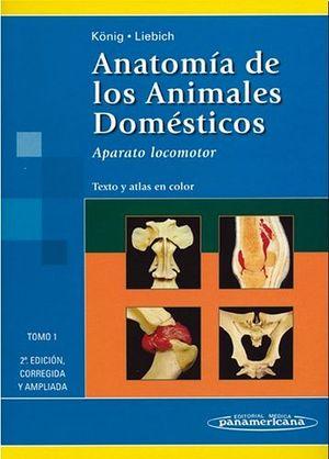 ANATOMIA DE LOS ANIMALES DOMESTICOS VOL I  2ED.