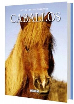 CABALLOS            (COL.ANIMALES EN IMAGENES)