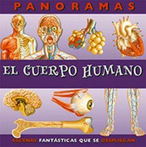 CUERPO HUMANO, EL  -S.PANORAMAS-                             (PL)