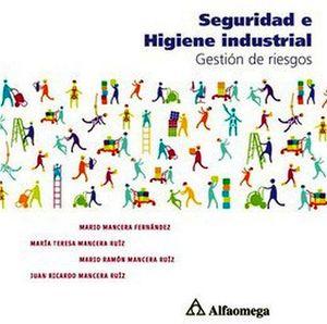 SEGURIDAD E HIGIENE INDUSTRIAL -GESTION DE RIESGOS-
