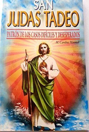 SAN JUDAS TADEO -PATRONO DE LOS CASOS DIFICILES/LB-  (HIDRO)