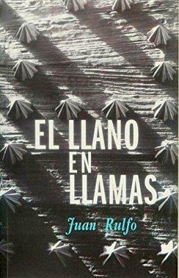 LLANO EN LLAMAS, EL       (ED. RM)