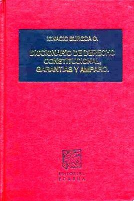 DICCIONARIO DE DERECHO CONSTITUCIONAL GARANTIAS Y AMPARO   (TELA)