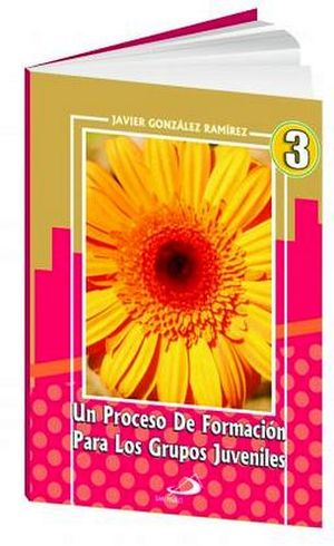 UN PROCESO DE FORMACION PARA GRUPOS JUVENILES 3 SEC.